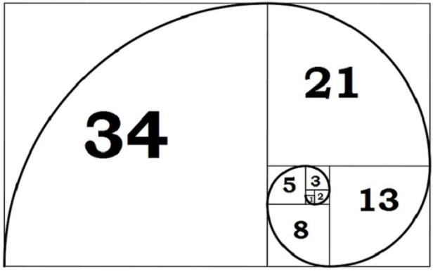 signum-magnum-2