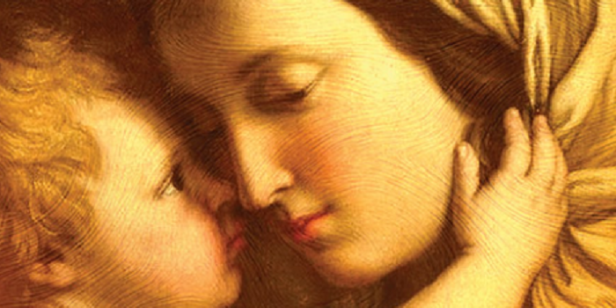 immaculate-mother.png