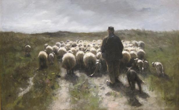 shepherd-flock.png
